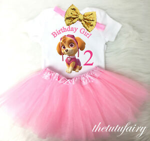 La Foto Se Esta Cargando Skye Paw Patrol Gold Pink 2nd Second Birthday