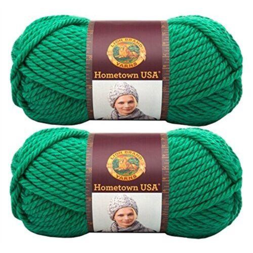 Green Bay Lion Brand Yarn Company 1-piece Hometown Usa Yarn Yarn