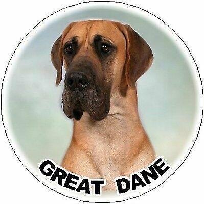 Great Dane Fridge Magnet by Starprint