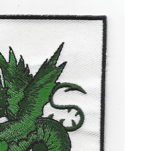 Family Coat Of Arms Green Dragon Patch