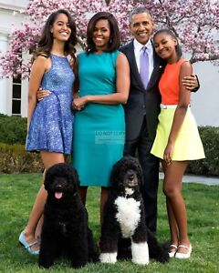 BARACK-OBAMA-amp-FAMILY-WITH-PET-DOGS-2015-EASTER-PORTRAIT-8X10-PHOTO-EP-058