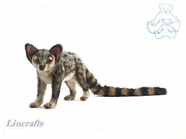 Standing Genet. Plush Soft Toy by Hansa. Sold by Lincrafts. 4937