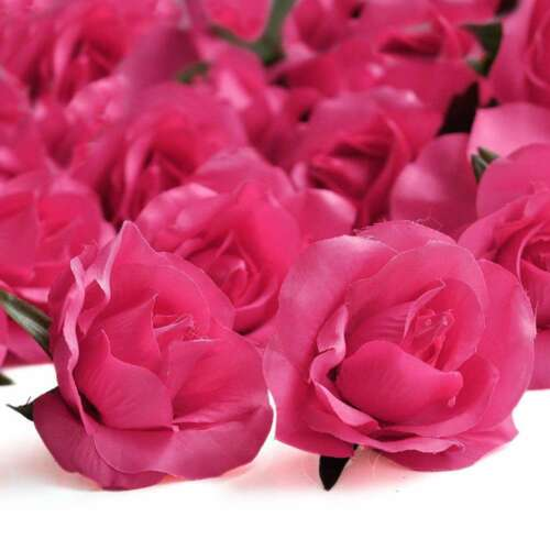 20stk.Künstliche Gradient Roseköpfe Blumen Blütenköpfe Rose Rot 65mm PRHS5-2