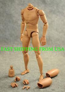 1-6-Narrow-Shoulder-Male-Body-Figure-For-Hot-Toys-TTM18-TTM19-TTM21-USA