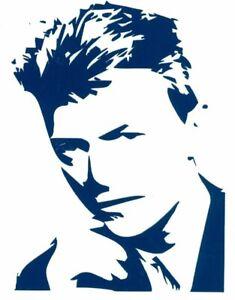 rock n roll punk rock David Bowie Vinyl Decal permanent indoor outdoor