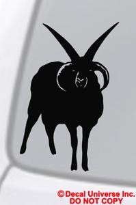 FOUR-HORNED-JACOB-SHEEP-Vinyl-Decal-Sticker-Window-Wall-Bumper-Satan-Animal-Goat