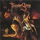 Thunderstorm - Faithless Soul (2004)