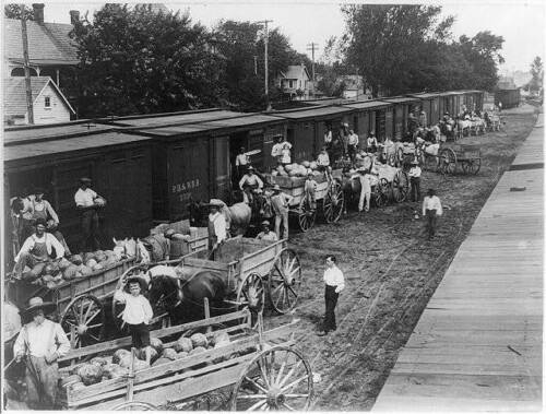 Watermelon Season,Laurel,Delaware,1905,Railroad Cars,RR,horse drawn wagons