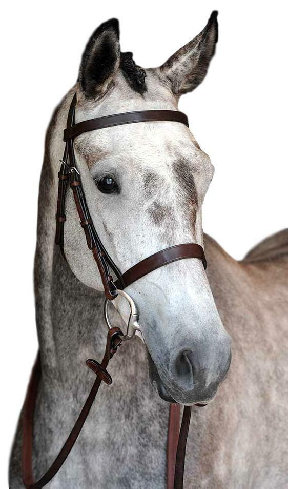 Collegiate Hunt Cavesson Leather English Bridle IV with Rubber Reins