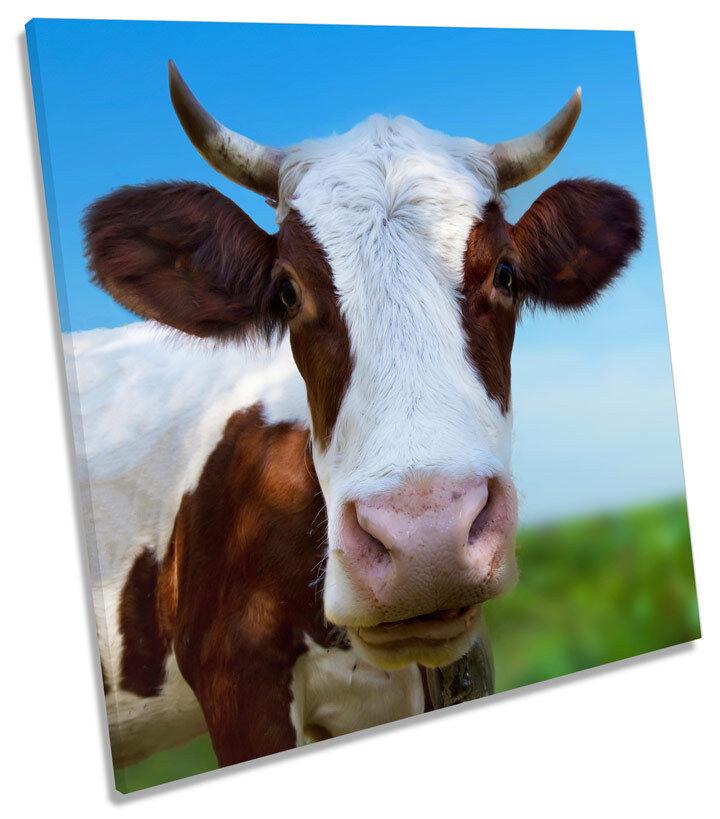 Cow Face Horns Farm SQUARE BOX FRAMED CANVAS ART Print