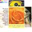 縮圖 1 - Spirit-Oracle-Deck-Cards-Esoteric-Fortune-Telling-Blue-Angel-New