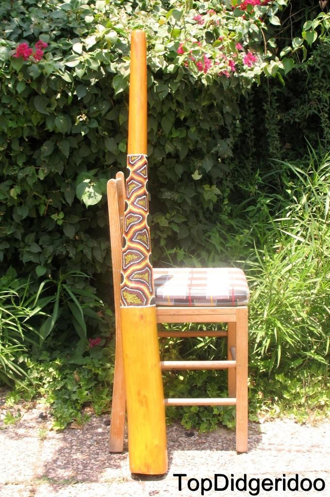sconto Termite Forato Teak 130cm (130cm) Aborigeno Didgeridoo + + + Custodia + Api + Free  centro commerciale online integrato professionale