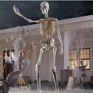 12 foot skeleton Brand New In Box!!