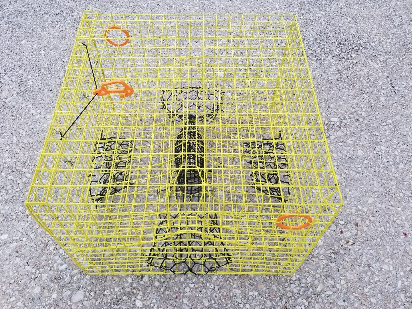 Full  Size YELLOW   Maryland Commercial Grade Heavy Duty Crab Pot 24 x24 x18   free shipping on all orders
