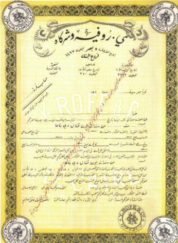 Egypt bond Company Y.Rofe Society purpose Cairo Deco