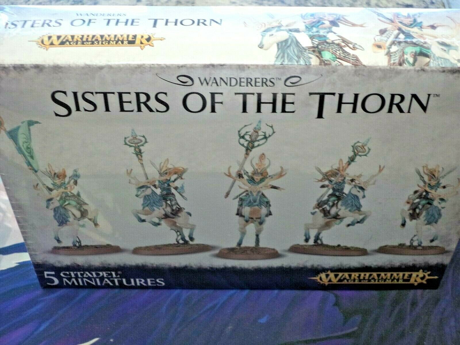 Sisters of the Thorn Elf Wanderers Warhammer 40k 40000 Age of Sigmar Model New