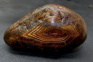Black-River-agate-rough-uncut-collector-specimen-AC6