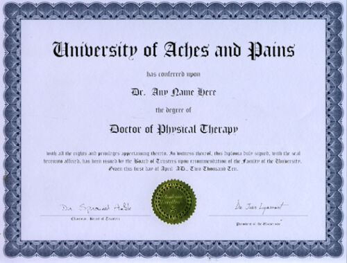Doctor Physical Therapy Novelty Diploma Yoga  Pilates
