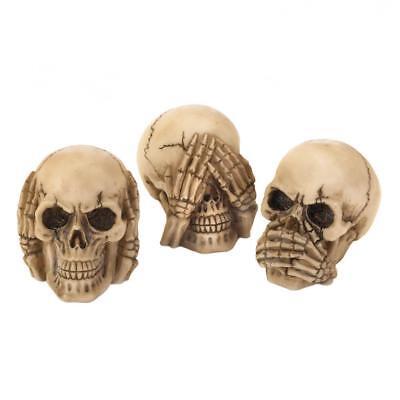 Skull Mini Trio *Hear//See//Speak No Evil* Spooky Halloween Decor//Curio* 3 Skulls