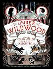 Under Wildwood by Colin Meloy (Hardback)