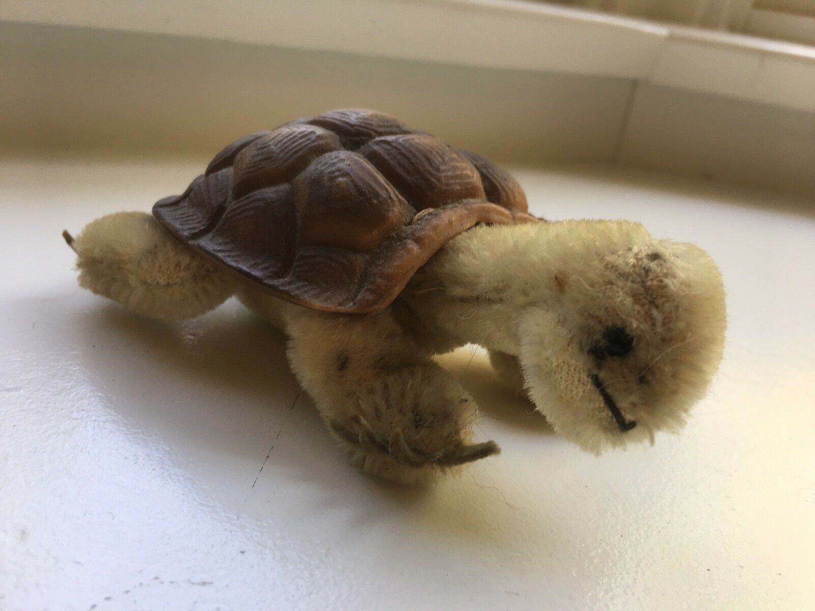 """Steiff Germany Turtle, """"Slo"""" Vintage Mohair Plush with Rubber Shell c1960s"""