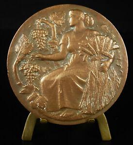 Medaglia-Allegorie-Agricoltura-Raccolto-Harvest-Allegoria-Harvest-Grappolo-Medal