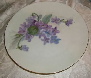 Beautiful-Floral-Plate-By-Bavaria-Germany-Gold-Trim-7-1-2-034