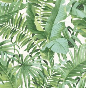 Tropical Green Palm Leaves Wallpaper Sale 6 Rolls In Australian