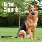 German Shepherds 2017 Wall Calendar by BrownTrout