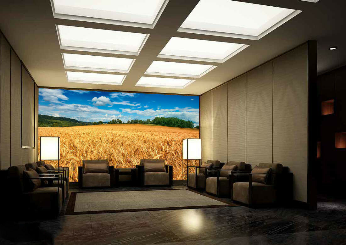 3D Wheat Field 44 Wallpaper Murals Wall Print Wallpaper Mural AJ WALL AU Lemon