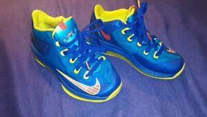 Boys Multicolored Nike Lebron James
