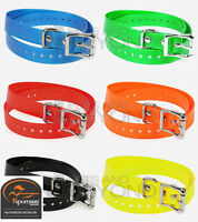 Sportdog 1 Inch Replacement Dog Collar Strap Authentic