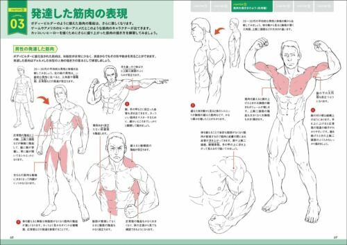 """Japan art Free S//H /'NEW/' How to Draw Manga Anime /"""" Muscle/"""" Technique Book"""