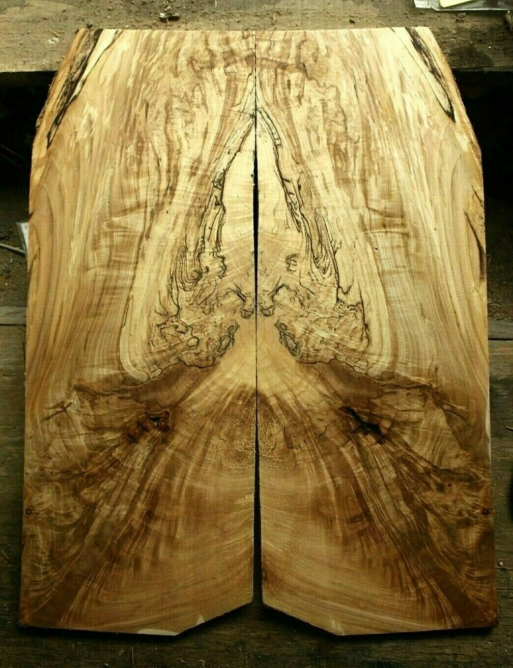 Spalted ink line ambrosia maple drop top 19x7x.33  guitar bass strat tele 1150