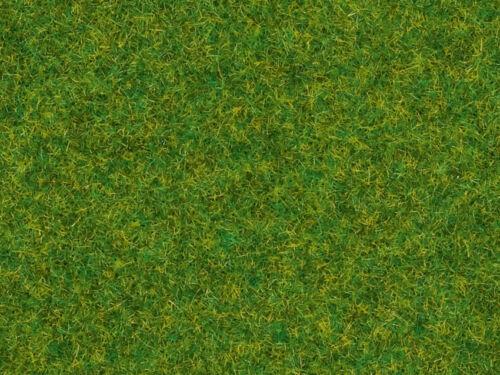 Noch 08314 Streugras Zierrasen 2,5 mm