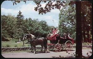 BUCK-HILL-FALLS-PA-Inn-The-Brake-Scenic-Tour-Horse-amp-Carriage-Vintage-Postcard