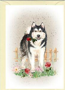 Alaskan-Malamute-Dog-4-034-x-6-034-Blank-Card-ideal-Mothers-Day-Valentine-Card-etc