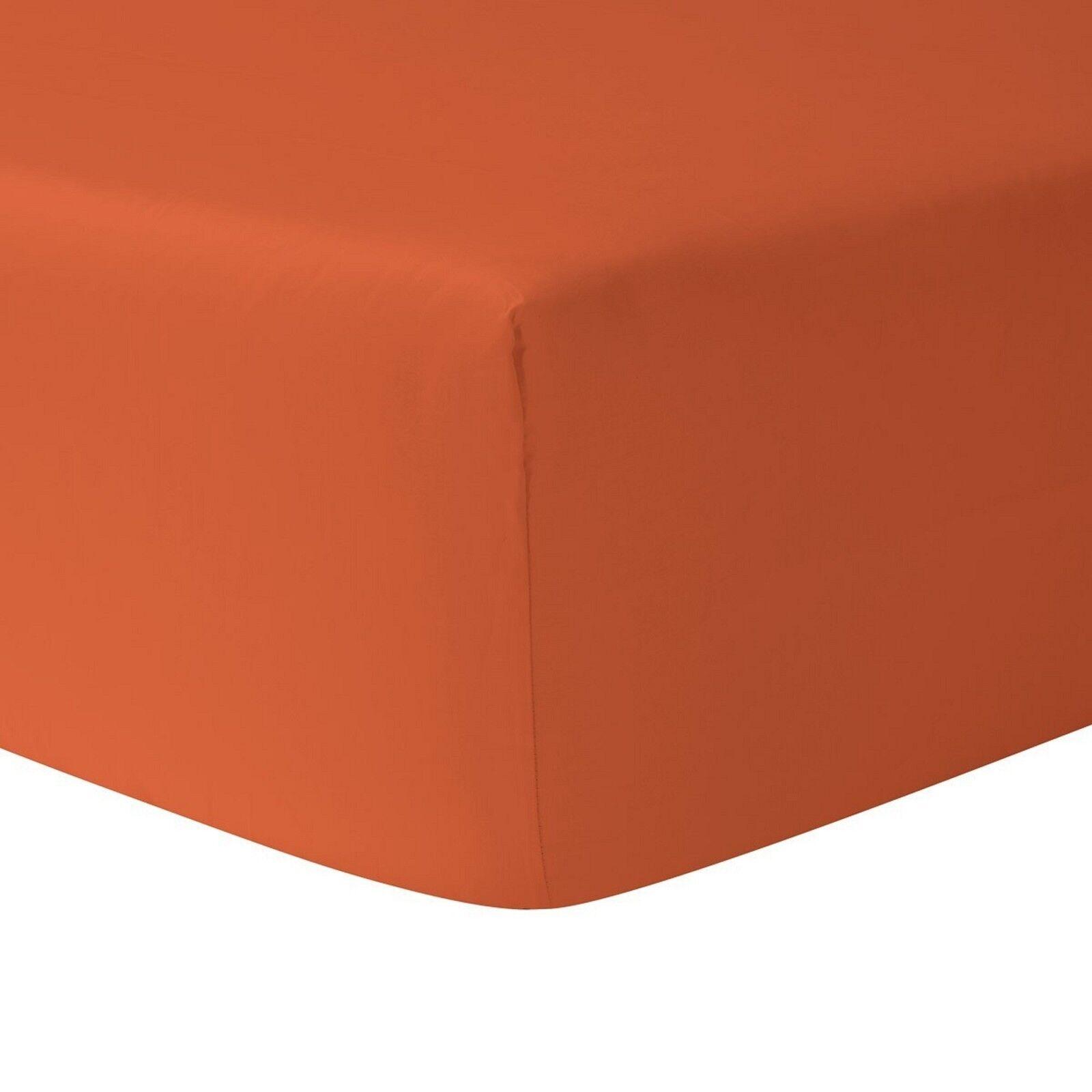 Sferra Celeste orange Twin Fitted Sheet Paprika 100% Egyptian Cotton  NEW