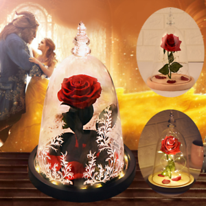 Beauty And The Beast Eternal Rose Led Light Glass Dome