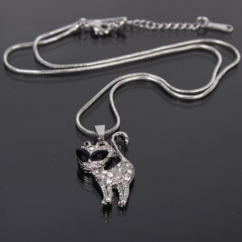 Collar cadena con gato Cat remolque de acero inoxidable pedrería