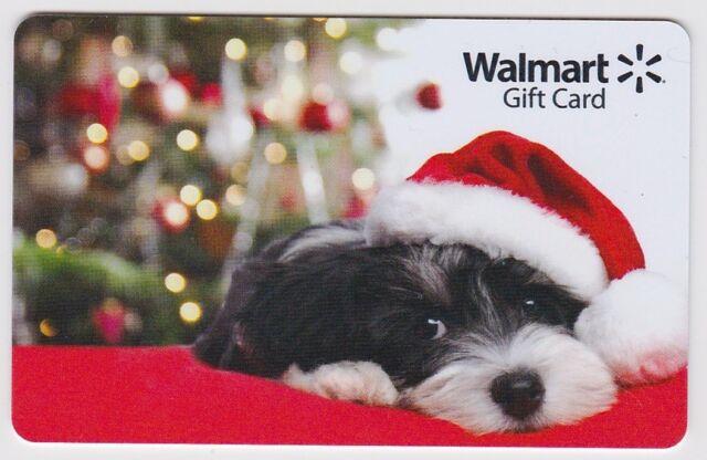 WalMart Christmas Black White Puppy Santa Hat Holiday 2015 Gift Card  FD-48542 96f8dad8f8b