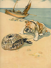 BULLDOG CHARMING DOG GREETINGS NOTE CARD CUTE DOG WITH LOBSTER ON THE BEACH