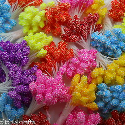 500 Head Stamens (Red Color Only) ZST1-12