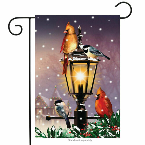 "FM37 THE GATHERING WINTER CARDINAL BIRDS  12/""x18/"" GARDEN FLAG BANNER"