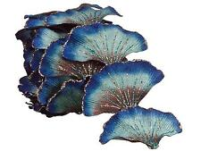 8.5' Regal Peacock Glittering Artificial Ginkgo Leaf Christmas Garland