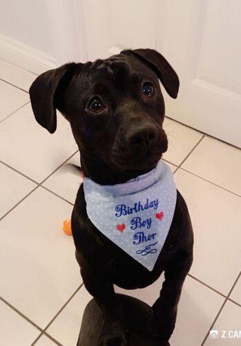 PERSONALISED BIRTHDAY DOG BANDANNA MACHINE EMBROIDERED   6 SIZES 2 COLOURS