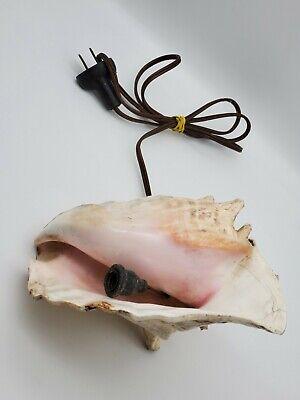 PINK CARDIUM PESODOLIMA SEA SHELL NIGHT LIGHT TABLE LAMP #7474