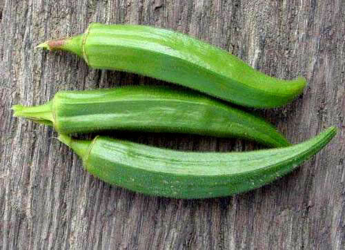300 Clemson Spineless Green Okra Vegetable Seeds Combsh Ebay