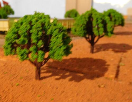 20 crédits verts feuillus hauteur 50 mm