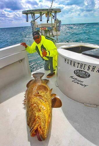 Stormline pêche cirés, dossier haut bib et accolade-milford 649